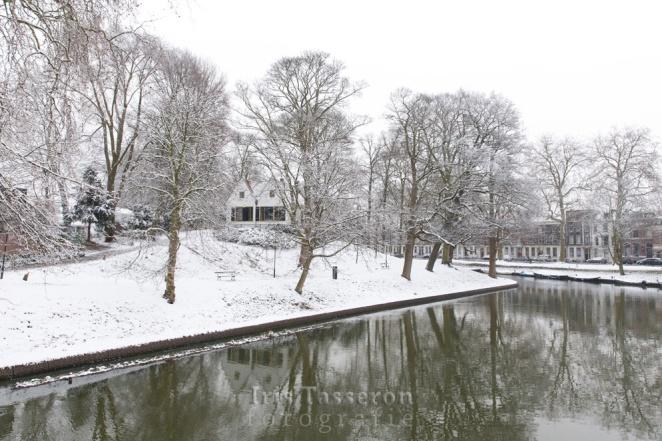 winter_c8a8801