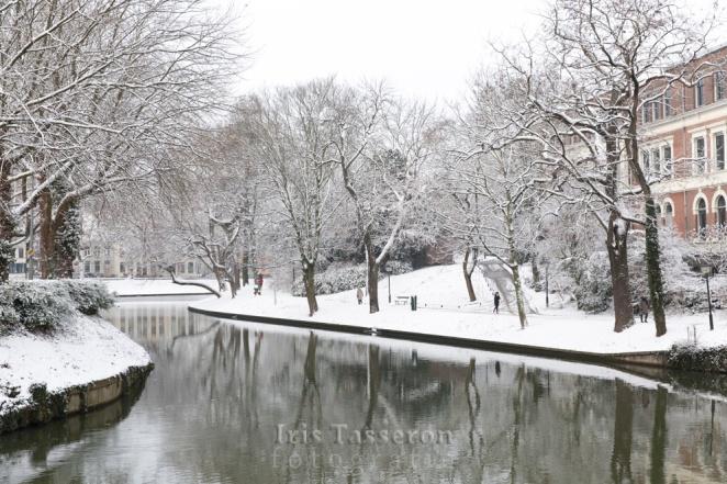 winter_c8a8809