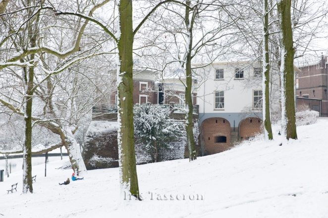 winter_c8a8855